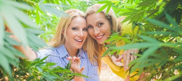 financement participatif cannabis